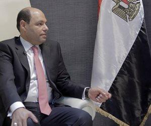 """برلمانى للمصريين فى الخارج: """"ساندتم مصر كثيرا وما زالت تنتظركم"""""""