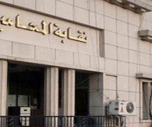قانون جديد يري النور.. «تشريعية البرلمان» توافق على تشريع لنقابة المحامين