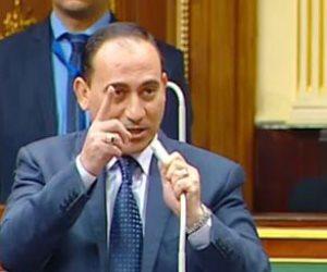 نائب يطالب بالضرب بيد من حديد على الداعين للتظاهر بشأن اتفاقية تعيين الحدود