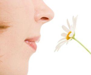 لماذا يحدث فقدان حاسة الشم عند التقدم في السن؟