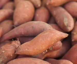 6 أطعمة صحية لحماية وتقوية العظام منهم اللفت الأخضر واللوز والبطاطا الحلوة