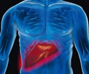 التغذية العلاجية في خدمة المرضى.. 10 أكلات صحية للحفاظ على وظائف الكبد