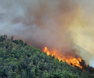 رجال الإطفاء يكافحون حرائق الغابات قرب أثينا لليوم الثالث