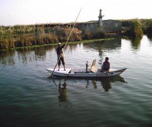 """فسخ عقود المستأجرين من """"الثروة السمكية"""" ببحيرة المنزلة (صور)"""