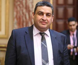 نائب بـ«محلية البرلمان» يطالب بتعميم العدادات الكودية لتفادي القراءات الخاطئة