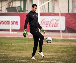 محمد الشناوي ينتظم في مران الأهلي