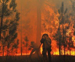 تجدد حرائق الغابات في البرتغال