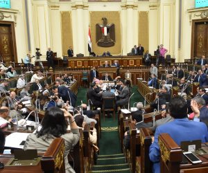 البرلمان يحذر المواطنين من اللحوم الفاسدة