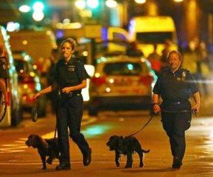 موريتانيا تدين حادث الدهس في برشلونة