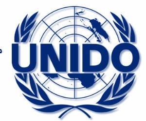 بالتعاون مع «اليونيدو».. غدا تنفيذ المرحلة الثانية من مبادرة التجارة الخضراء