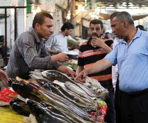 أسعار الأسماك اليوم الجمعة في سوق العبور.. البلطي يصل إلى 19 جنيها للكيلو