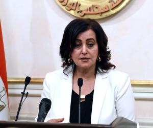 """نائب وزير الزراعة لشئون الثروة الداجنة: """"الفريزر"""" أساسي في محلات الفراخ"""
