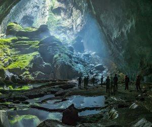 """تحديات كبيرة تواجه دول العالم.. كبير علماء """"ناشيونال جيوجرافيك"""" يتحدث عن انقراض التنوع البيولوجي"""