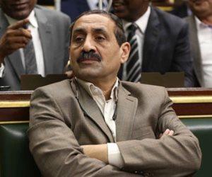 النائب تادرس قلدس: مصر تسعى لضخ شبكات اتصال في عمق إفريقيا
