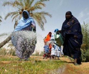 الرئيس التنفيذي لمبادرة سيكم: الزراعة الحيوية أهم الحلول لمواجهة التصحر بمصر وإفريقيا