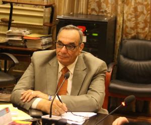 وكيل دفاع البرلمان: الحكومة بحاجة لتسويق جيد لمشروعاتها العملاقة
