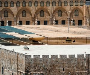 «الإعلام الفلسطينية» تحذر من اعتزام «جماعة الهيكل» تنظيم «تدريب قرابين الفصح »