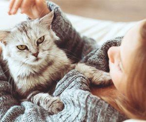 لو سنة أولى تربية قطط؟ اعرف مكان صندوق الفضلات المناسب