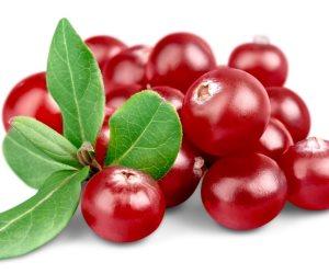 نحن في انتظار فاكهة الربيع..التوت مفيد لصحة القلب ويعالج فقر الدم ويقوى المناعة