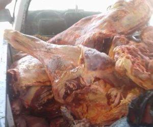 ضبط 400 طن لحوم فاسدة ودواجن وأسماك وزيت في الجيزة منذ بداية شهر رمضان