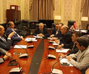 """""""نقل البرلمان"""" تنظم زيارة ميدانية للوادي الجديد لتفقد مشروعات الطرق"""