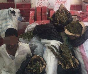 ضبط عاطل بحوزته 15ألف علبة سجائر و20 كيلو بانجو بشمال سيناء (صور)