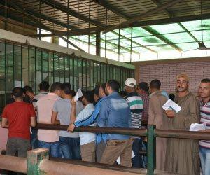 الخارجية توفق أوضاع العمالة المصرية بالأردن.. وتبدأ في تلقي الطلبات غدا وتنتهي بعد شهر