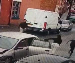 بسبب حادث.. 9 أشخاص يهربون من هوندا سيفيك صغيرة (فيديو)
