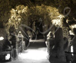 «جبلاية القلعة بحديقة الحيوان».. «مفيش قرود» لزوار العيد (صور)