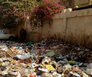أزمة القمامة في شوارع النزهة الجديدة.. الأهالى: «جالنا المرض» والحي: «مش موجود» (صور)
