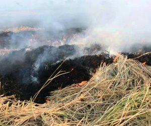 «حرق قش الأرز.. ارحموا الأوزون».. البيئة تتخذ إجراءات للتصدي للظاهرة في المحافظات