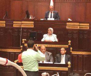 نائب وزير الصحة تعرض دور الجمعيات الأهلية في قضايا السكان على البرلمان