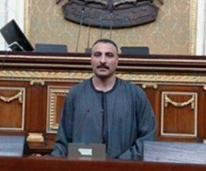 برلماني: هنكسب الكونغو 2/ 0