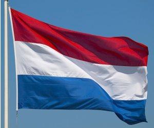 هولندا أكبر دولة مصدرة للبيض بالاتحاد الأوروبي