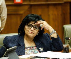 """نائبة """"حقوق الإنسان"""" في البرلمان تؤيدها.. الشروط الكاملة لاستضافة الأطفال بعد الانفصال"""