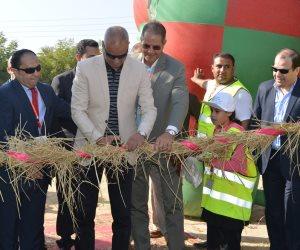 لأول مرة بمصر.. مهرجان لقش الأرز يقدم حلولا غير تقليدية لاستخدامه في الصناعة