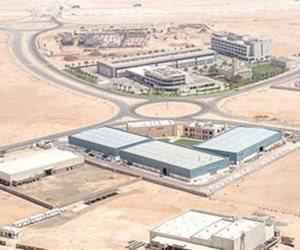 استثمار صينى بمدينة الروبيكي للمصنوعات الجلدية ومنطقة صناعية للمنسوجات والإلكترونيات