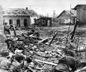 جيورجي جوكوف.. الرجل الذي هزم هتلر في ستالينجراد