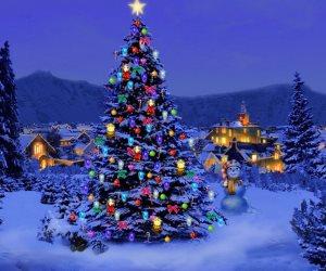 هؤلاء يحرقون أشجار الميلاد.. أعداء الكريسماس الأربعة