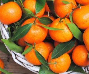 4 فوائد لليوسفي في الشتاء (انفوجراف)