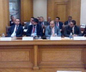 """""""الدواجن"""": مصر تستورد 1.5 مليون كتكوت من فرنسا بتكلفة 4 ملايين سنويا"""