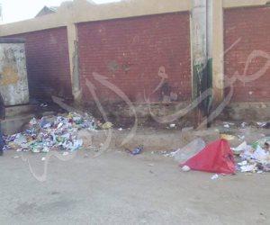 أزمة القمامة في أسوان تهزم طلبات الإحاطة والاستجوابات.. والمحافظ ينتظر المدد