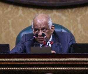 عبد العال : حصة مصر الميائية لم تتغير رغم زيادة السكان واتمنى حل مشكلة دول حوض النيل