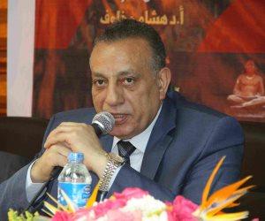 محافظة الجيزة تجمل شارع السودان بلوحات فرعونية للحفاظ على الشكل الحضاري