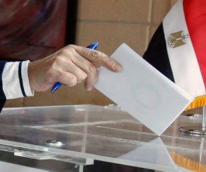 قبل 6 أيام من الاقتراع.. أبرز الجهود المبذولة لضمان المشاركة في الانتخابات الرئاسية