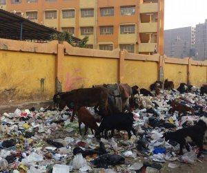 محافظ القاهرة يواجه القمامة بـ5 آلاف سلة مهملات