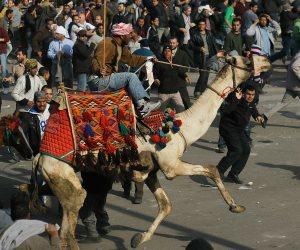 """2 فبراير 2011.. يوم """"برك الجمل"""" في ميدان التحرير"""