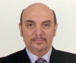 محمد فريد منسقا عاما لاتحاد المصريين فى الخارج لدعم السيسى