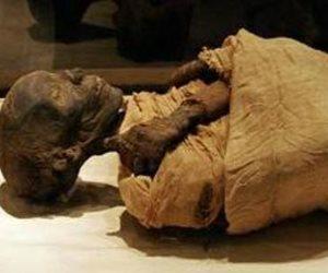 """""""من فات قديمة"""" خبراء تجميل من ماليزيا ينصحون استخدام الحناء مثل قدماء المصريين بدلا من الصبغات"""