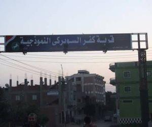 «فيها حاجة حلوة».. شباب بالشرقية يحولون قرية من مستنقع إهمال إلى جنة (صور)